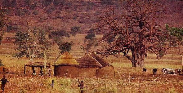 région des savanes-Togo